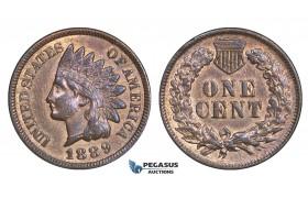AA168, United States, Indian Cent 1889, Philadelphia, Cleaned AU