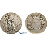 AA972, France & United States, Art Nouveau Silver Medal ND (c. 1900) (Ø44.5mm, 45.5g) by Rivet, Viticulture