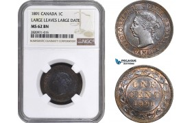 "AB854, Canada, Victoria, 1 Cent 1891 ""Large Leaves, Large Date"" NGC MS62BN"