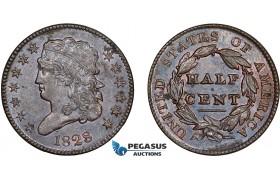 AD317, United States, Classic Head 1/2 Cent 1828, Philadelphia, Cleaned AU-UNC