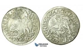 T123, Poland (for Lithuania) Sigismund II Augustus, Groschen 1566-SA, Tykocin, Silver (1.40g) TOP Grade!