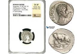 ZC06, Roman Empire, Augustus (27 BC - 14 AD) AR Denarius (3.70g) Lugdunum (Lyon) 15-13 BC, Bull, NGC Ch XF