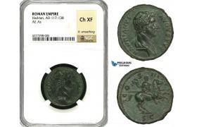 ZC53, Roman Empire, Hadrian (117-138 AD) Æ As (10.69g) Rome, 132-135 AD, Horse, NGC Ch XF