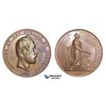 ZM788, Sweden, Karl XV, Bronze Medal 1868 (Ø58mm, 83g) by Ericsson, Lund University, Owl, Minerva