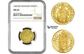 AA254, Hungary, Leopold, Ducat 1681-KB, Kremnitz, Gold, NGC MS64, Pop 1/0, Finest! Rare!