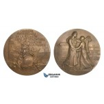 AA595, France, Bronze Art Nouveau Medal 1898 (Ø69mm, 144.6g) by Vernon, Reunification with Mulhouse Centenary