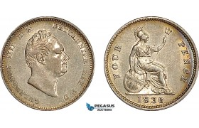 AF025, Great Britain, William IV, Maundy Fourpence 1836, London, Silver, AU