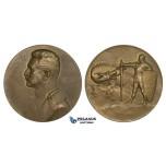 ZM266, Austria, Bronze Medal 1915 (Ø65mm, 106g) by Hartig, Conrad von Hotzendorf, Dragon