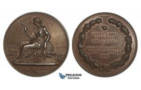 AA003 Finland under Russia, Alexander II, Bronze Medal 1875 (Ø43mm, 34.8g) by Jahn, Bee Hive, Rare!