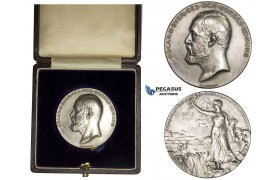 AA016, Sweden, Oscar II, Silver Art Nouveau Medal 1901 (Ø39mm, 29.8g) by Lindberg, Agriculture Exhibition