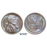 AA170, United States, Lincoln Cent 1919-D, Denver, Violet Brown AU-UNC