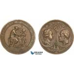 AB204, Sweden, Bronze Medal 1878 (Ø43.5mm, 37.7g) by Lindberg, Owl, Goteborg Science Society