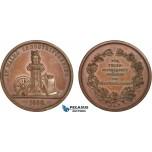 AB946, Sweden, Bronze Medal 1860 (Ø31mm, 14.45g) Owl, Malmö Industry