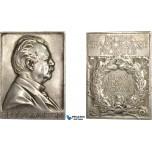 AC528, Sweden, Silver Plaque Medal 1920 (67x47mm, 93.3g) by Lindberg, Hugo Hamilton, Minister for Civil Affairs