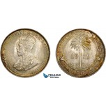 AD382, British West Africa, George V, 2 Shillings 1919, Silver, Edge damage and stained UNC