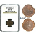 M99, Great Britain, Victoria, Farthing 1860 (TB/TB) NGC MS64BN