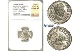 P57, Roman Empire, Septimius Severus (193-211 AD) AR Denarius (3.42g) Rome, 204 AD, Lion, NGC Ch AU