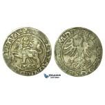 Y119, Poland (for Lithuania) Sigismund II Augustus, 1/2 Groschen 1565-SA, Vilnius, Silver (1.14g)