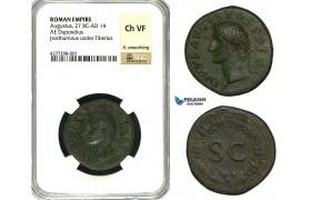 ZC09, Roman Empire, Divus Augustus (d. 14 AD) Æ Dupondius (14.33g) Rome, 22-26 AD (Struck under Tiberius) NGC Ch VF