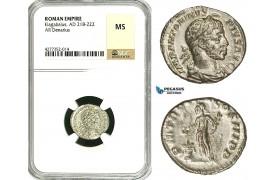 ZD12, Roman Empire, Elagabalus (218-222 AD), AR Denarius (3.22g) Rome, 220-221 AD, Altar, NGC MS