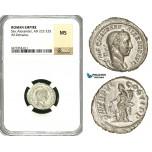 ZD30, Roman Empire, Severus Alexander (222-235 AD), AR Denarius (2.92g) Rome, Annona, NGC MS
