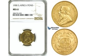 ZJ37, South Africa (ZAR) Pond 1900, Gold, NGC MS61