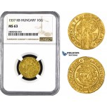 ZM208, Hungary, Ferdinand I, Ducat (Goldgulden) 1537-KB, Gold, NGC MS63