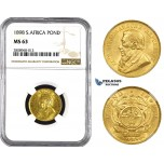 ZM209, South Africa (ZAR) Pond 1898, Gold, NGC MS63