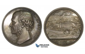 AA213, Sweden, Silver Medal 1886 (Ø48mm, 54.7g) by Ahlborn, David Carnegie, Halfsekels Mine