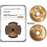 AA372, Britsih West Africa, George VI, Penny 1952-H, Heaton, NGC MS66RD