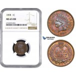 AA721, United States, Indian Cent 1898, Philadelphia, NGC MS65RB