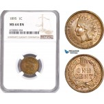 AE194, United States, Indian Head Cent 1895, Philadelphia, NGC MS64BN