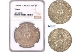 AF068, Argentina, Rio De La Plata, 8 Reales 1836 Ra P, Silver, NGC XF40