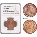 AF156, Straits Settlements, Edward VII, 1 Cent 1903, NGC MS64RB