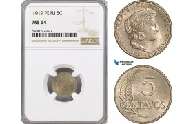 AG423, Peru, 5 Centavos 1919, NGC MS64, Pop 2/1