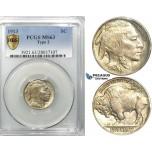 R521, United States, Buffalo Nickel (5C.) 1913