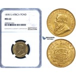 ZG80, South Africa (ZAR) Pond 1898, Gold, NGC MS62