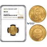 ZM844, France, Third Republic, 20 Francs 1877-A, Paris, Gold, NGC MS64