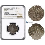 ZM993, Early American, Massachusetts, Small Pine Tree Shilling 1652, Silver, Noe-29, (72.4gr) NGC XF40